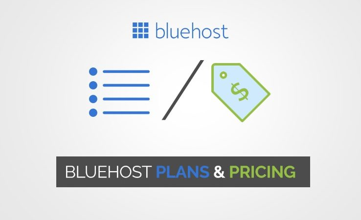 How much is Bluehost per month Or Bluehost Pricing?