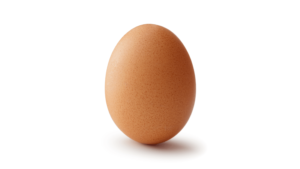 most liked instagram photo of world record egg